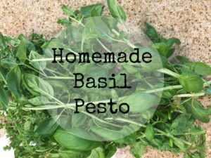 homemade-basil-pesto