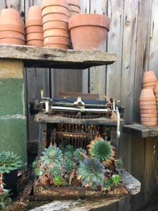 the-antique-gardener-sutter-creek