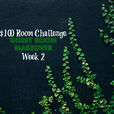 $100 Room Makeover Challenge | Week 2 | Guest Room
